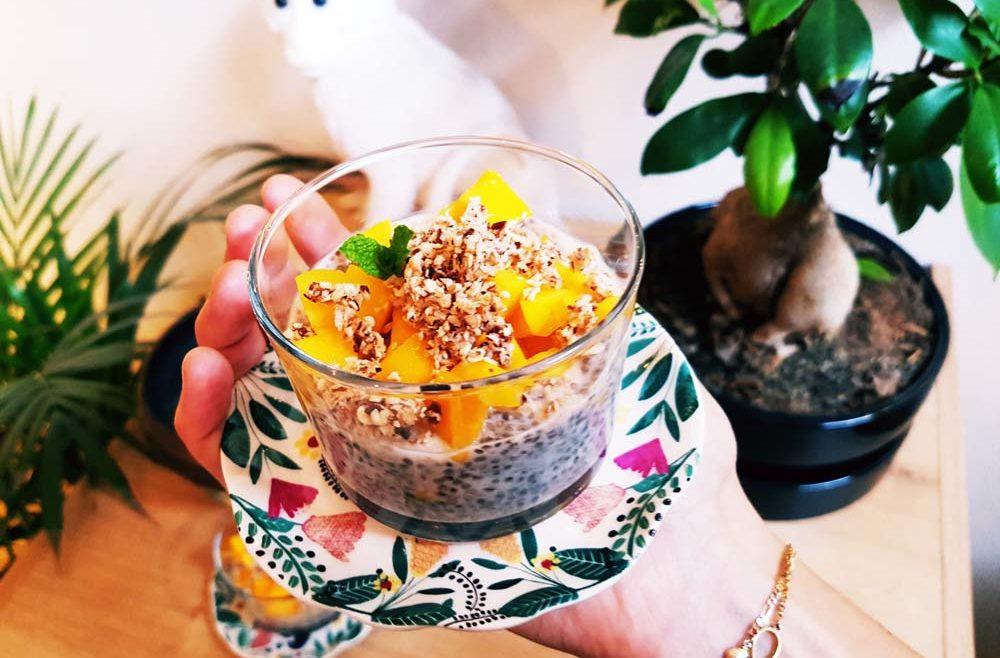 Chia pudding aux fruits