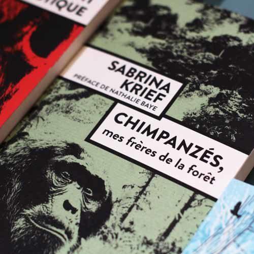 Chimpanzé Sabrina Krief