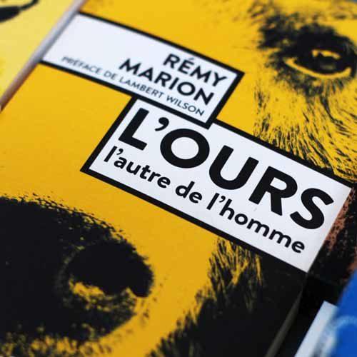 L'ours Rémy Marion